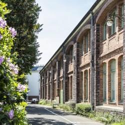 Le long du Parc Oberthur Fred Pieau