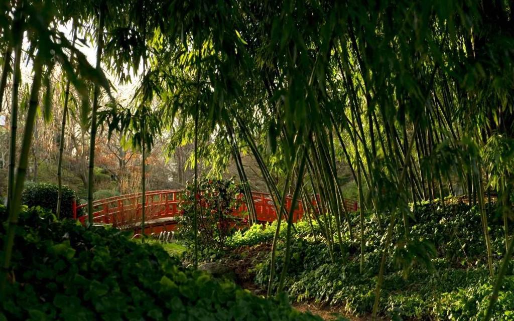 privatisation jardins albert kahn